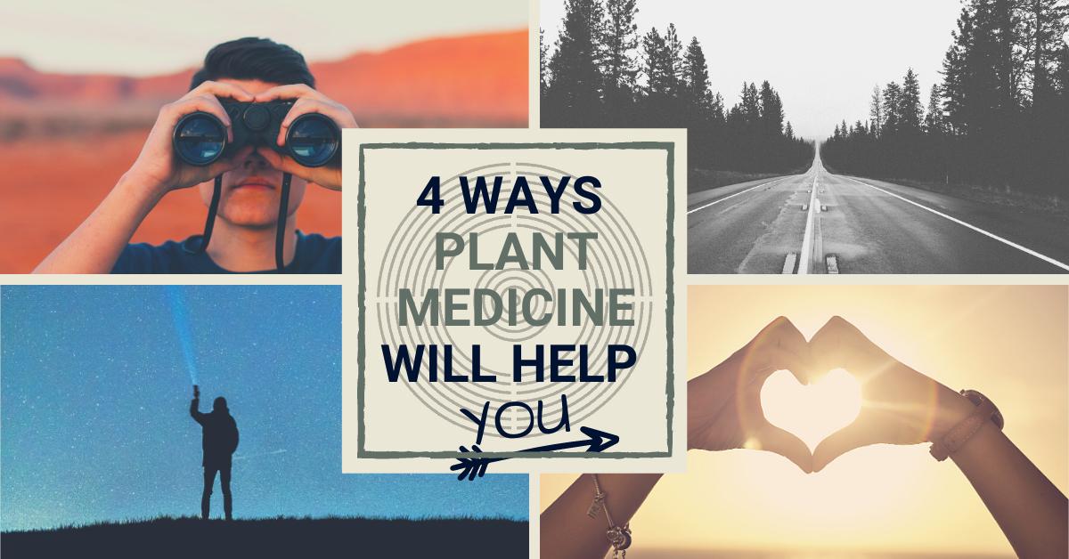 4 ways plant medicine will help you Jesse.tv